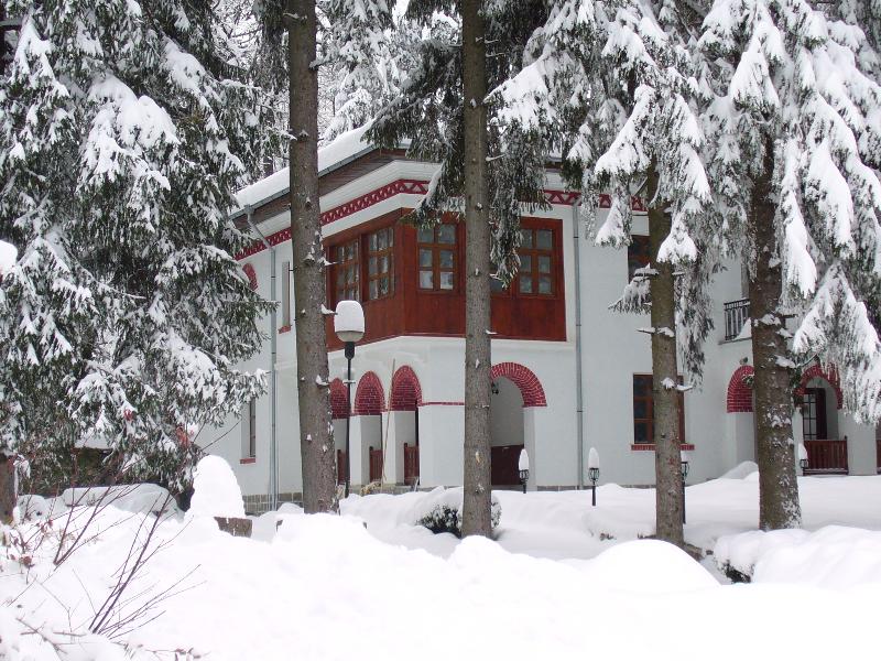 prez-zimata-2008